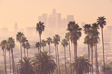 Los Angeles skyline filled with smog and palm trees