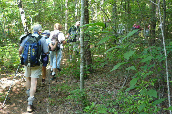 People hiking in one of South Carolina's 30 state parks.